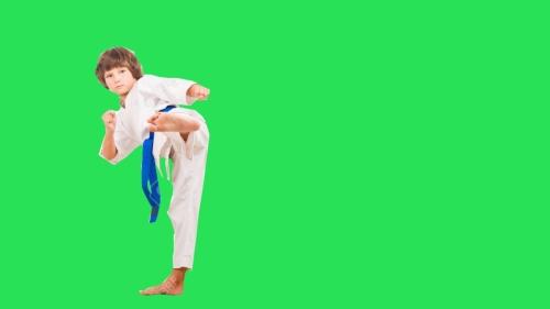 karateka kecil edit