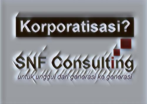 Logo SNF Consulting dengan tag line korporatisasi efek paper folding