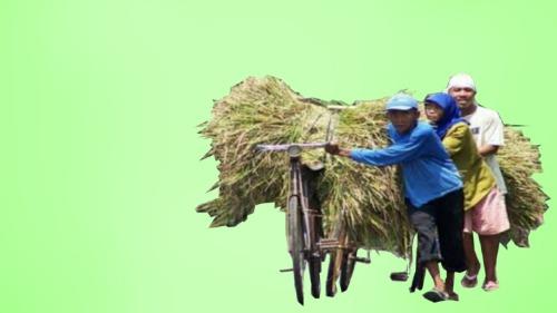pekerja desa