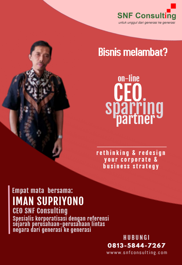 CEO Sparring partner3